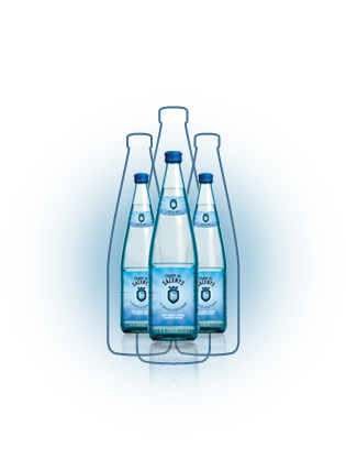Naturally carbonated water | Aigua de Salenys - 0,33L