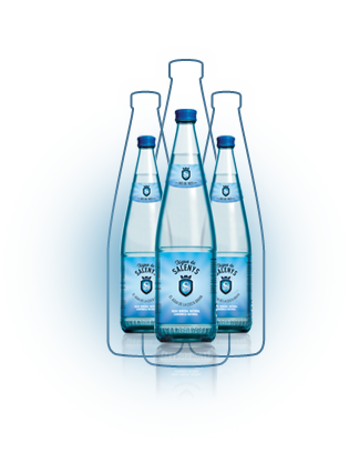 Naturally carbonated water | Aigua de Salenys - 0,5L